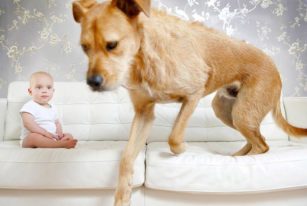 baby-and-dog.JPG