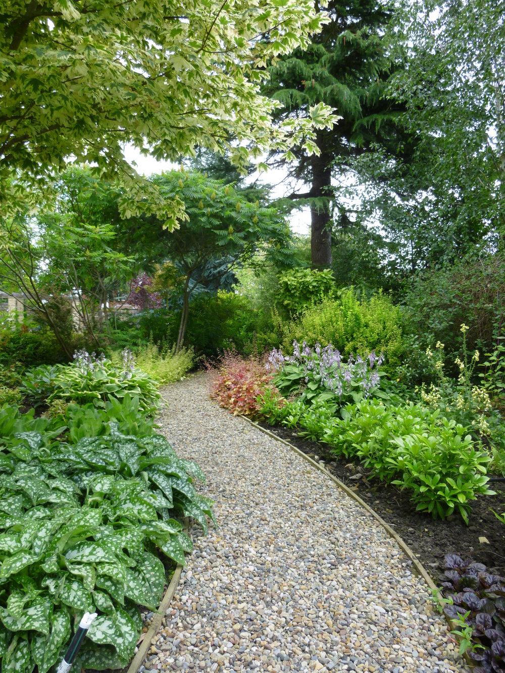 New woodland paths lead through the ornamental planting.