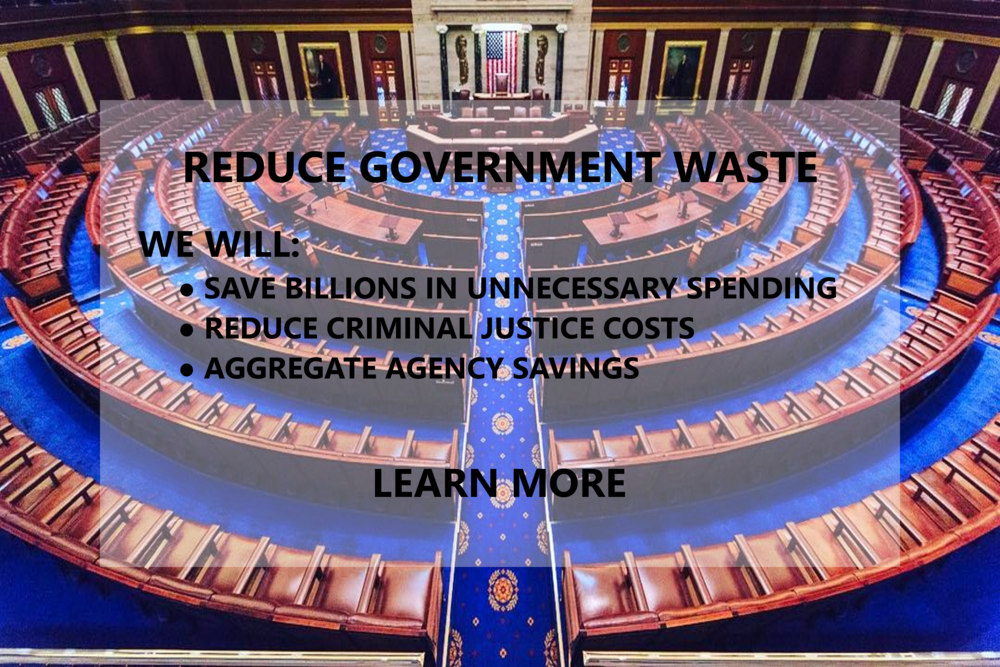 WClarke_ReduceGovernmentWasteFinal.png