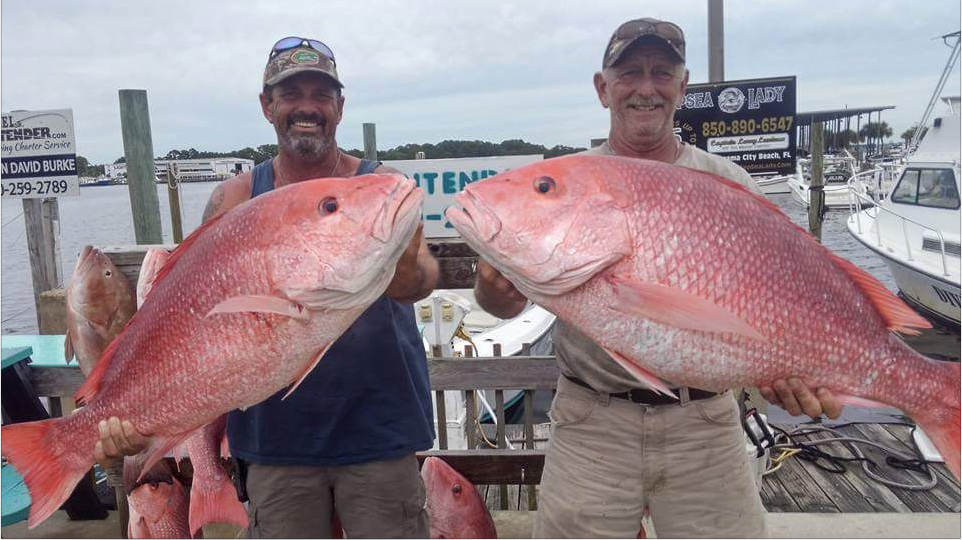 Twinsies! Mike Lee of Bruce and Troy Reddick pulled in a pair of red snapper off Panama City Beach July 21. Their fish tipped the scales at 28 and 29 pounds.