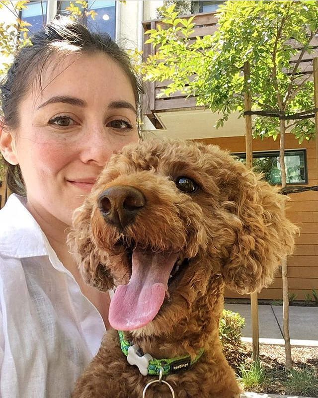 Rebecca Pet Services Dog Daycare In Home Sitter San Pablo California SF CA Bay Service