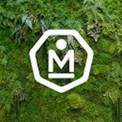 MNDFL MEDITATION.jpg