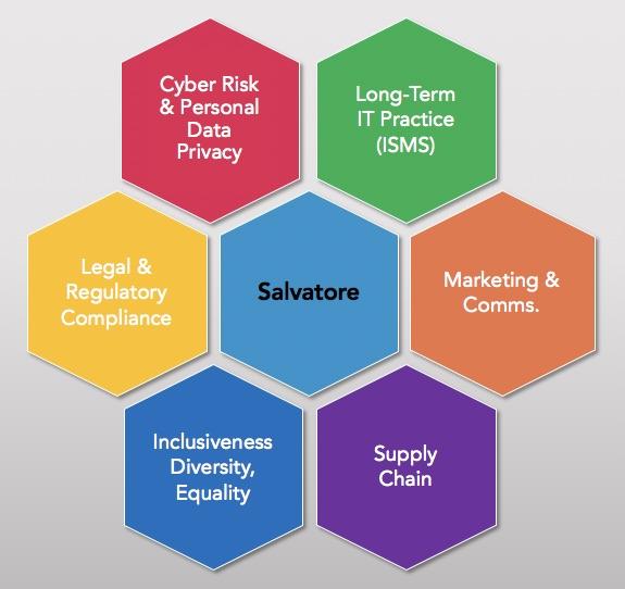 Key business gaps created by external governance demands