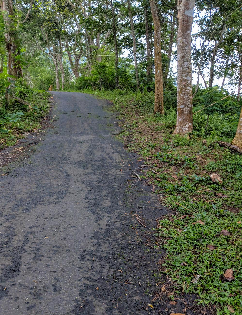 Steep Walk to Pura Lempuyang
