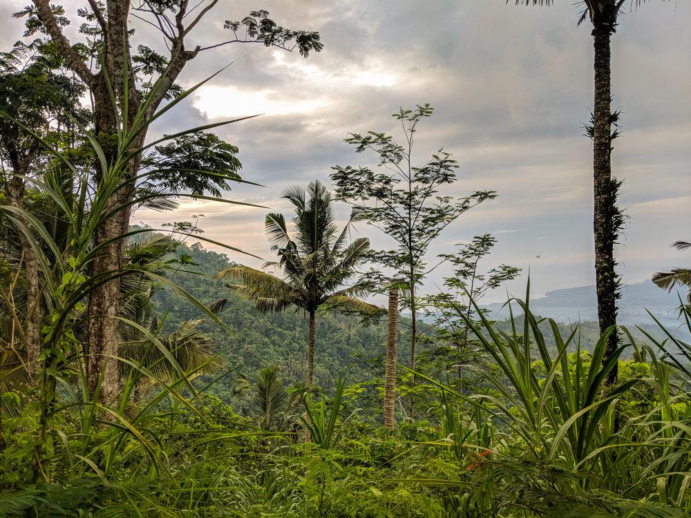 Views of Mount Agung