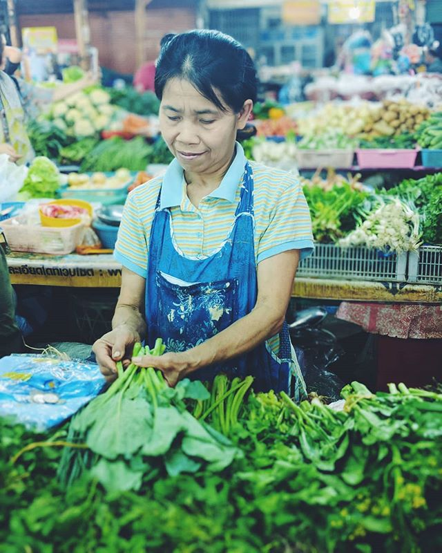 I find the markets in Southeast Asia super fascinating. This particular market in Chiang Mai is the cleanest by far. I could have spent all day people watching. . . . . #portrait #thailand #chiangmai #southeastasia #thai #thailand_allshots #amazingthailand #asia #insta_thailand #thaishop #market #food #adayinthailand #veggie #homegrown #world #traveladdict #instago #mytravelgram #travelblog #tourist #igtravel #tourism #workanywhere #laptoplifestyle #ladiesgoneglobal #locationindependent