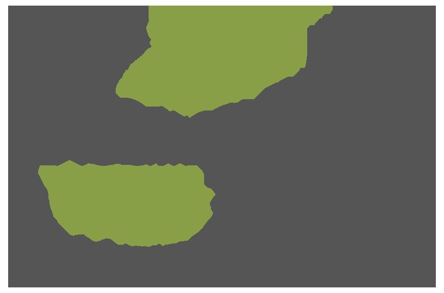 www.healingtreenonprofit.org