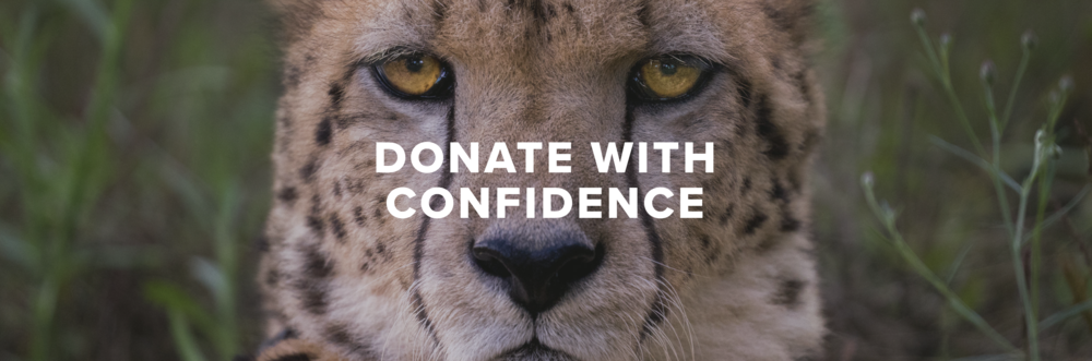 - 100% OF DONATIONS GO TO SAFE-GUARDING AFRICAN WILDLIFE.