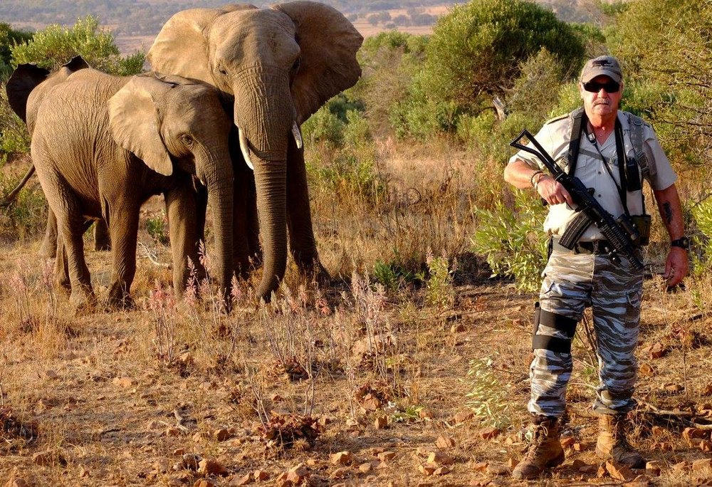 Wes with elephants.jpg