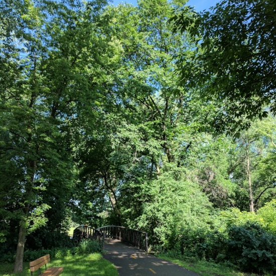 Much of the path has good tree cover; probably good on a warm day.
