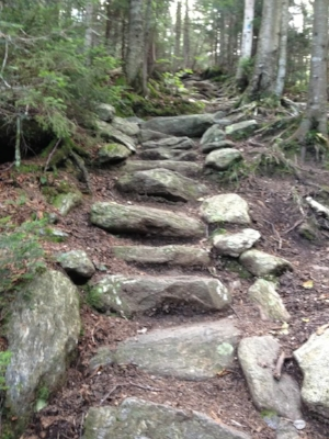 The early trail builders of Vermont hadn't heard of switchbacks: trails that go up, go  straight  up!