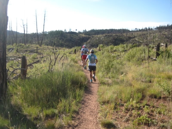 Running through part of the Hi Meadows Fire burn area, near the start of the race.