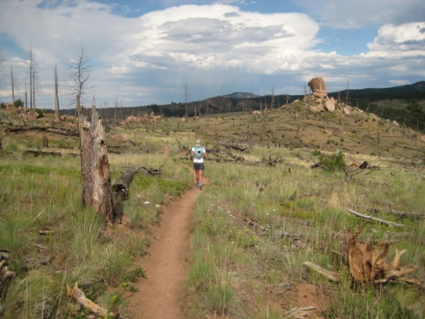 On the Gashouse Trail, crossing another part of the Buffalo Creek burn area.