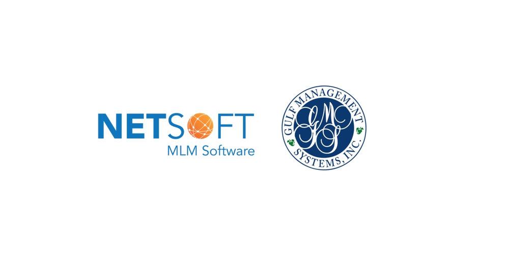 Netsoft GMS Image.jpg