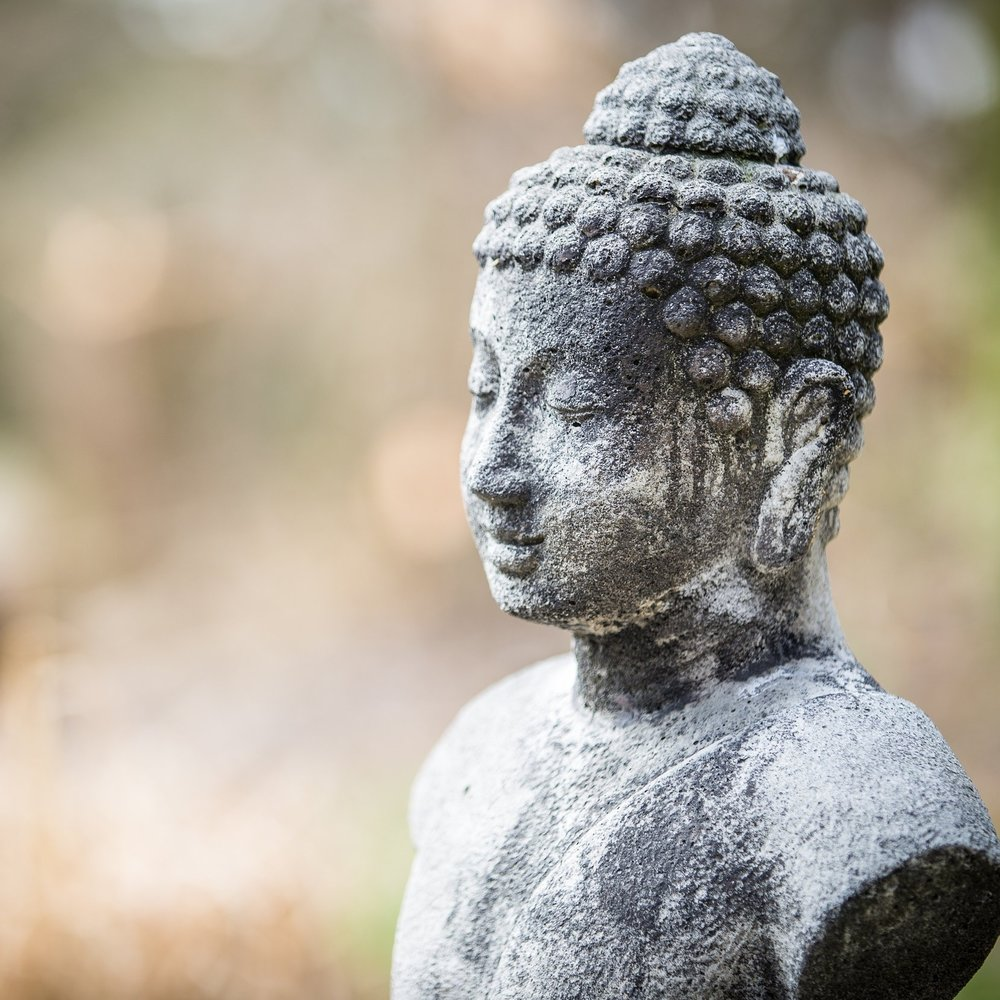 Mindfulness Classes -