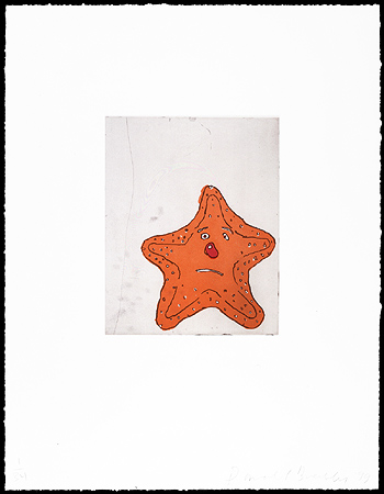 Starfish, 1999. Etching and aquatint. Plate size: 10x 8 in. Sheet size: 22 x 17 in.  Edition of 34. Paper: Magnani Pescia. Plates processed and printed by Felix Harlan, Carol Weaver and Maggie Wright, New York.