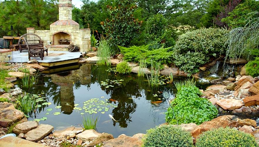 Water Garden • Koi Pond