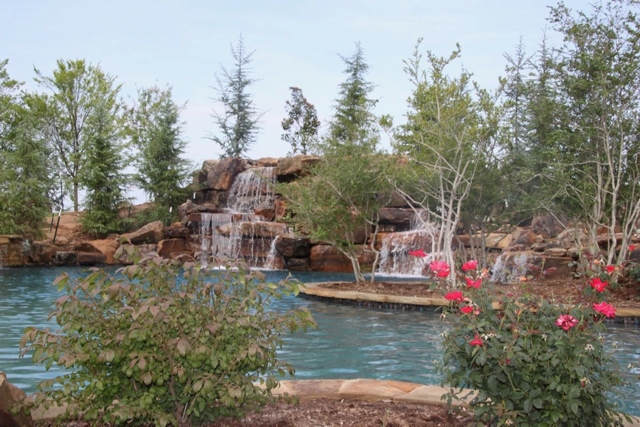 Natural Oasis