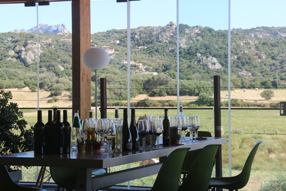 Vigne Surrau's tasting room