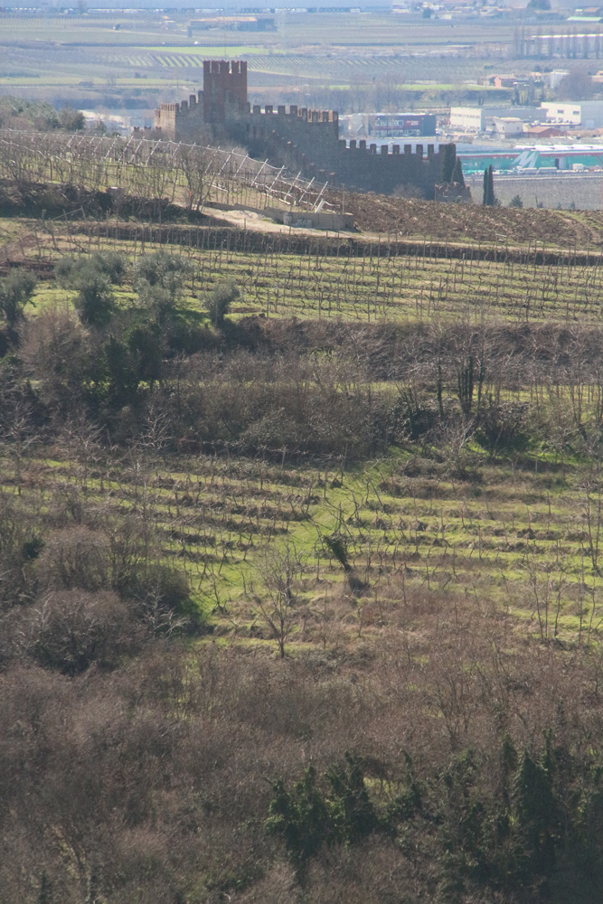 Soave Classico vineyards, with the Castle of Soave and the plain behind.