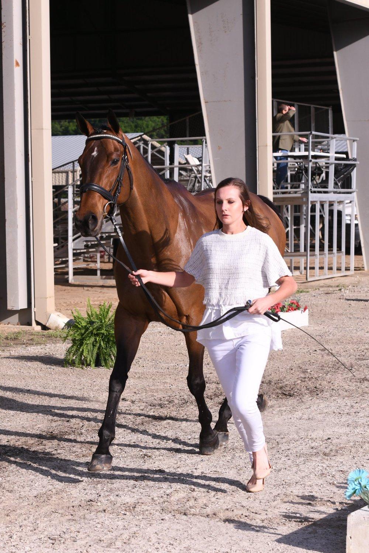 Meet Claire, equestrian blogger behind @clairevoyance1.com
