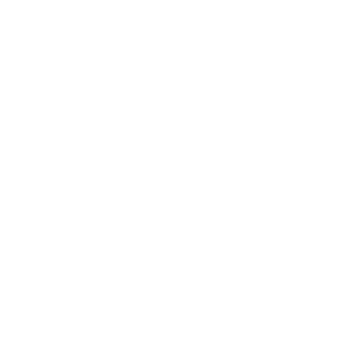 Institute of neurocoaching