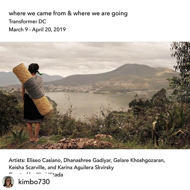 "Looking forward to installing one of my large scale hand cut paper walls in the upcoming exhibition ""Where we came from and where we are going"", curated by @kimbo730 at @transformerdc, opening March 9. The exhibition considers the precarious status of immigrants in the U.S. today, delving into ideas of immigration through the mining of family histories and personal narratives.  Image Credit: Karina Aguilera Skvirsky  #handcutpaper #handmadepaper #artindc #washingtonartsdistrict #installationart #immigrantstories"