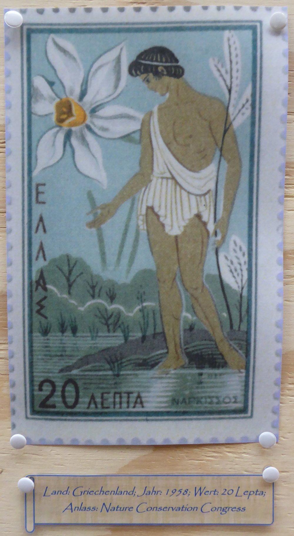 Narcissus - Briefmarke 1.JPG