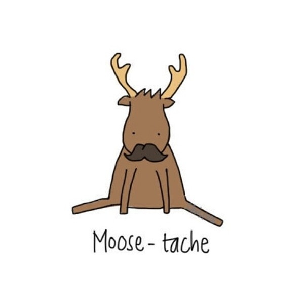moosetache.jpeg