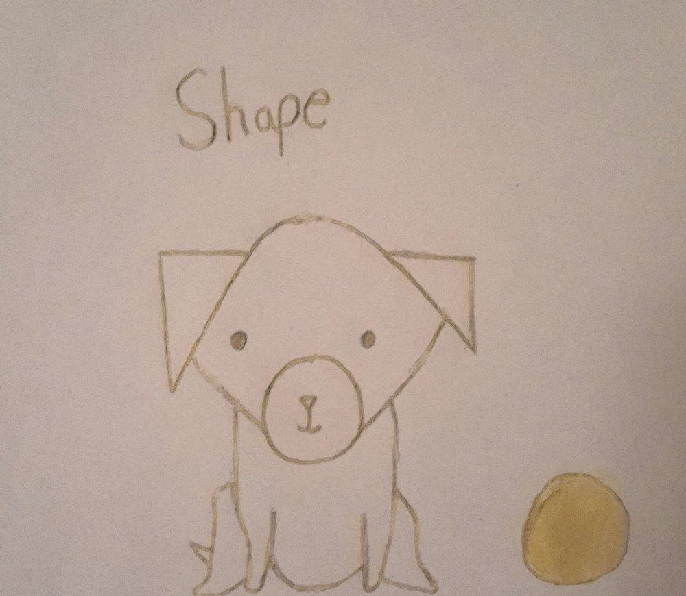 shape.jpg