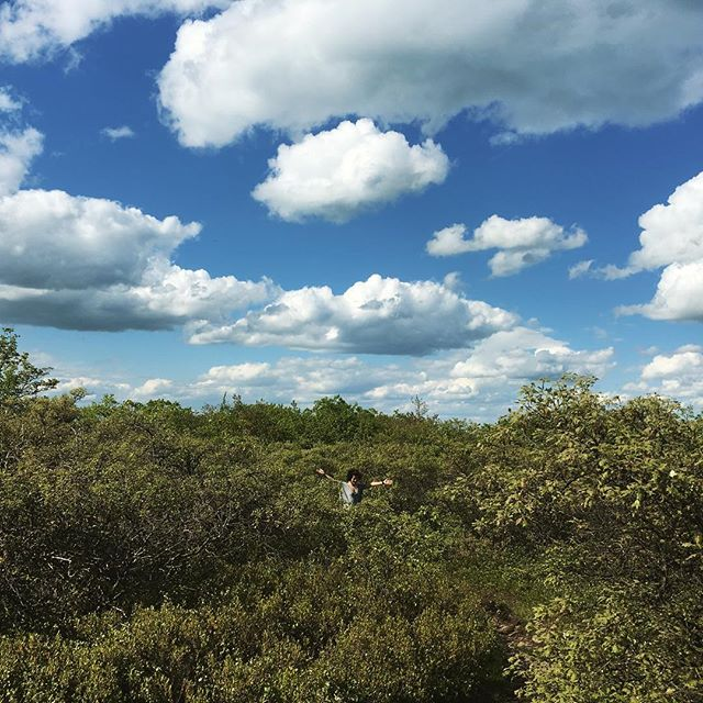 to a week ago when I was surrounded by greens and skies🌳🌳🌳🌞🌳🌳🌳 #realclouds