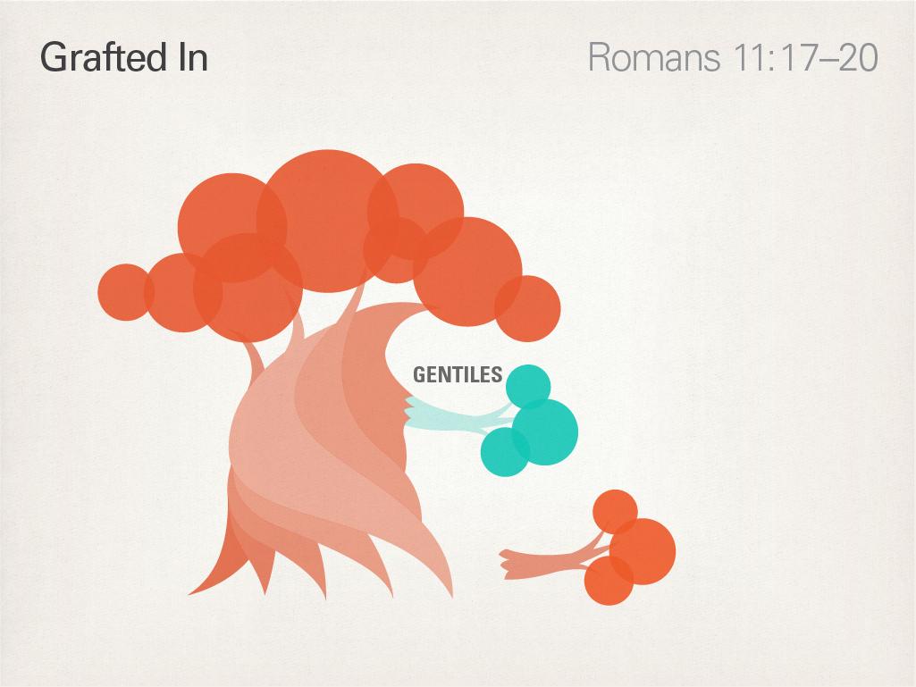 Runge Romans 3