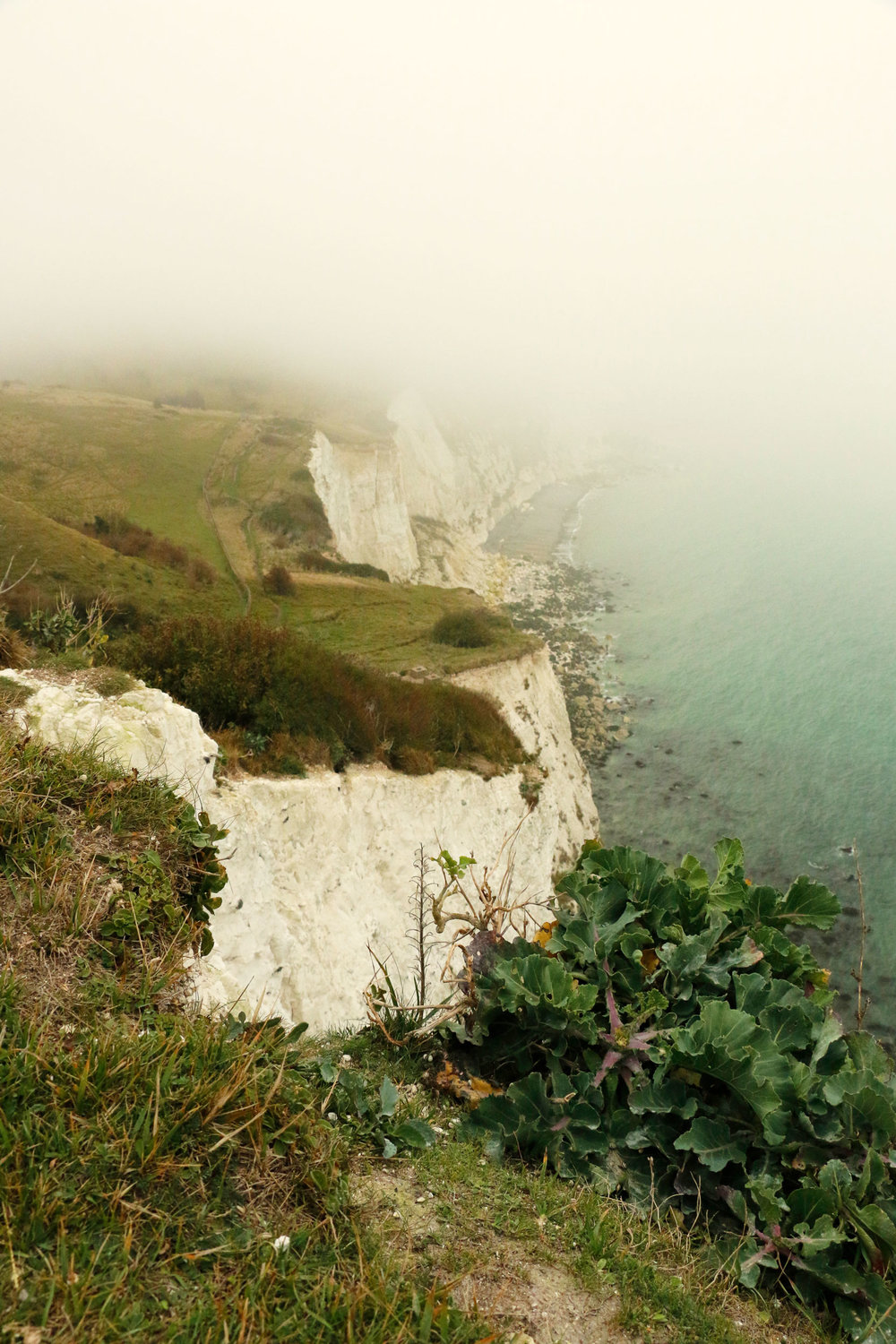 White-Cliffs_web.jpg
