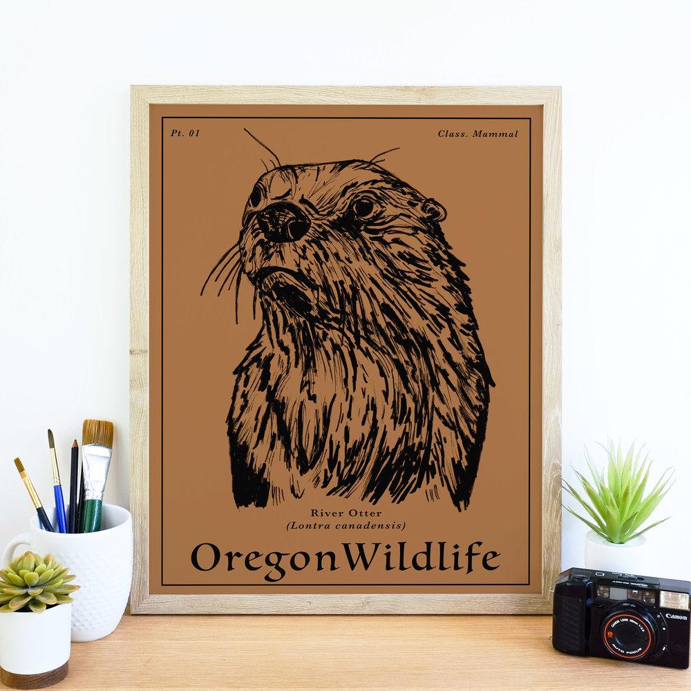 RiverOtter_wildlife.jpg