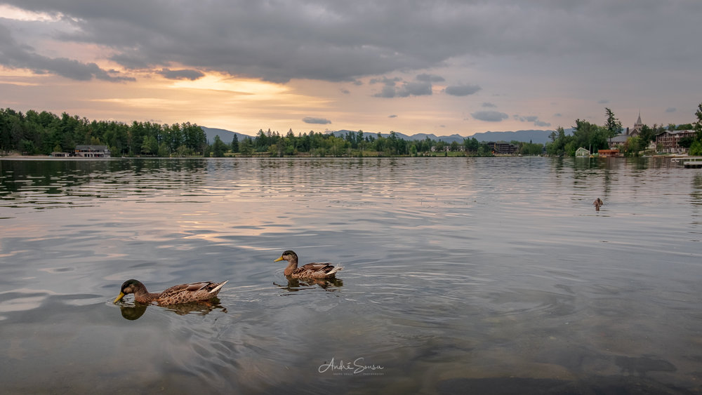 Lake Placid -