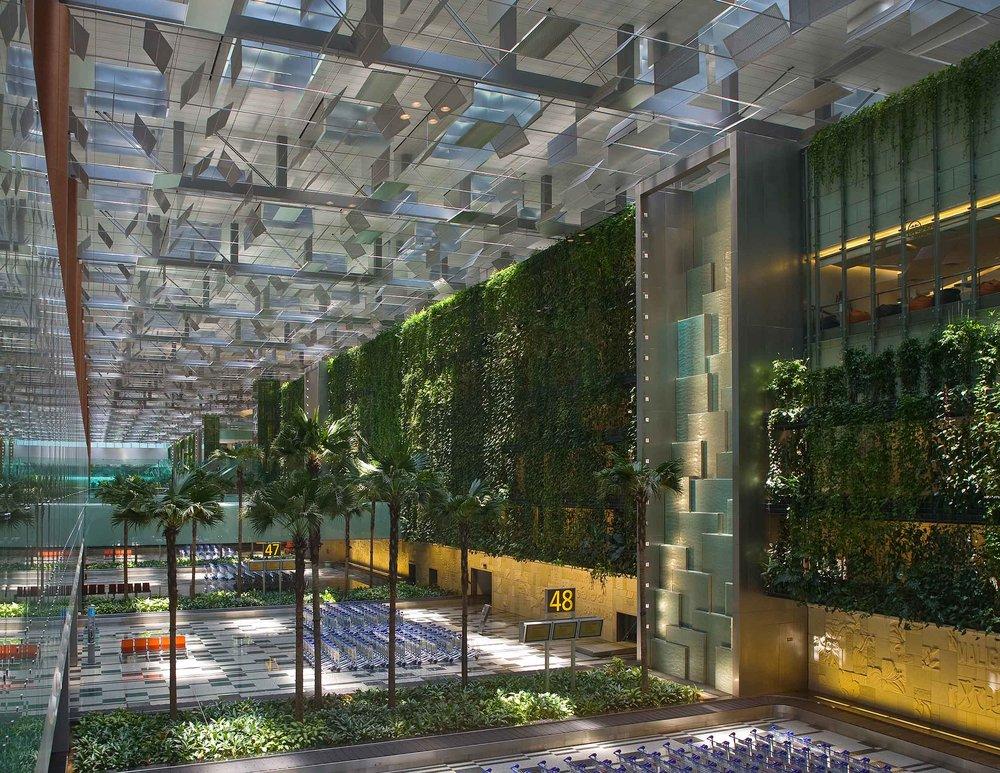 changi t3, singapore  Tierra Design