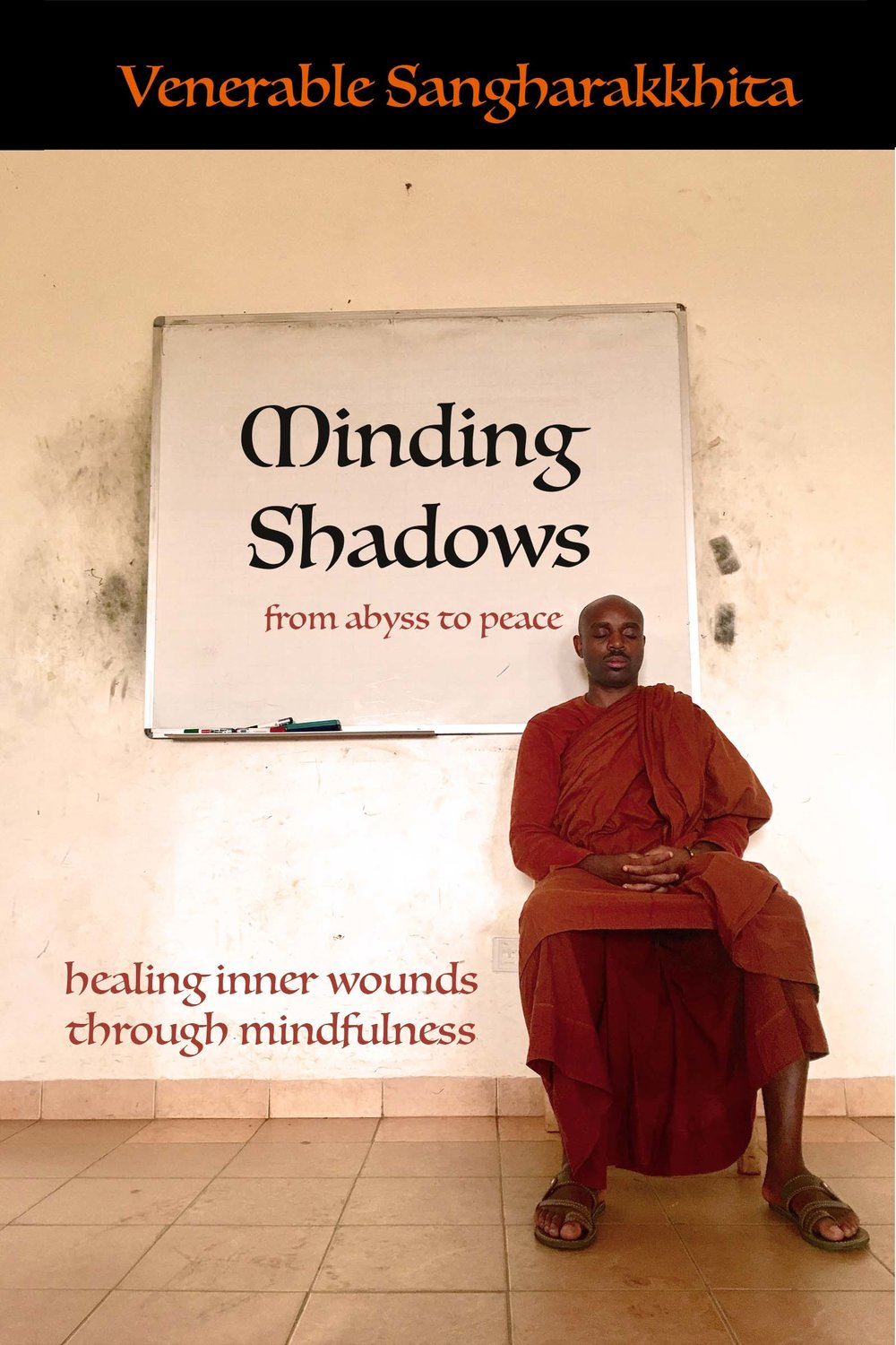 Minding Shadows temporary cover image.jpg