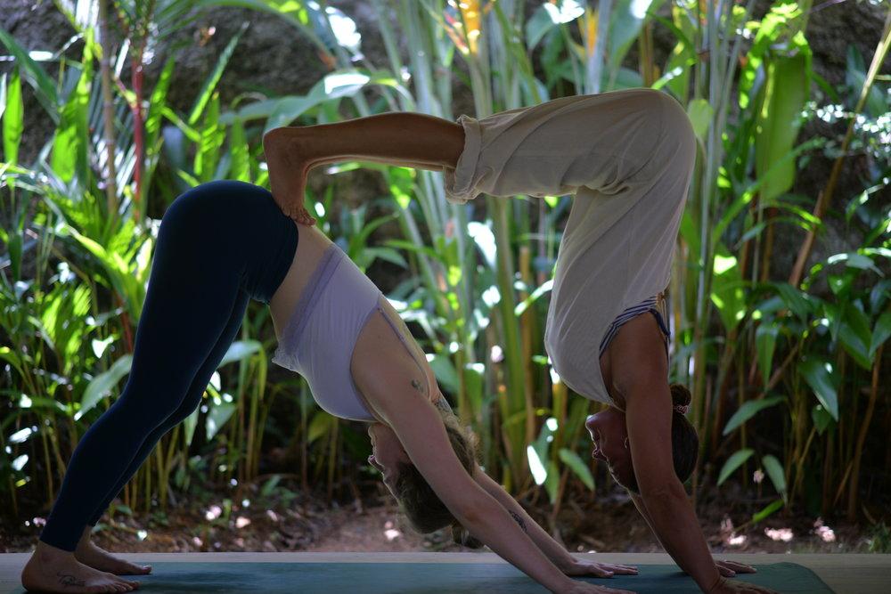 womens yoga retreat sri lanka
