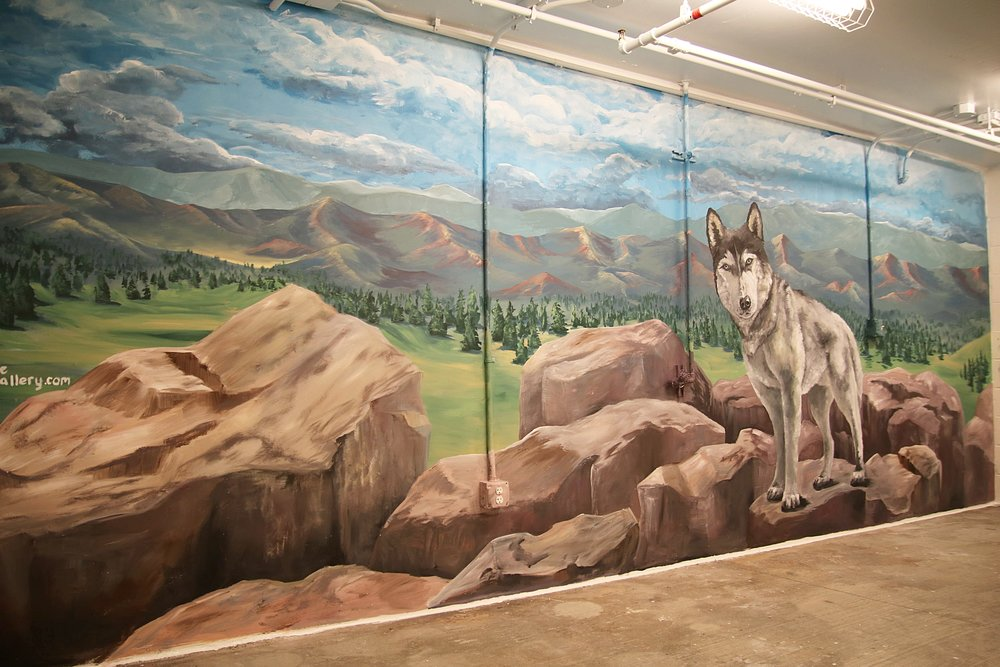 """Confluence Dog Spa   DENVER, CO  20' x 12'  This beautiful foothill scene takes you on a hike with """"Nine"""" the husky who loves to enjoy the essence of Colorado. This piece is the backdrop for The Confluence dog spa where residents can bring their pups to get pampered."""