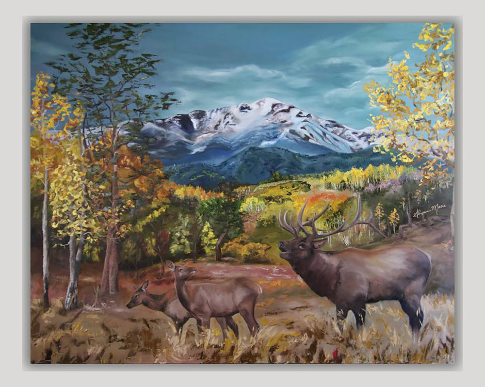 ELK AT PIKES PEAK  48X60 // Oil on Canvas