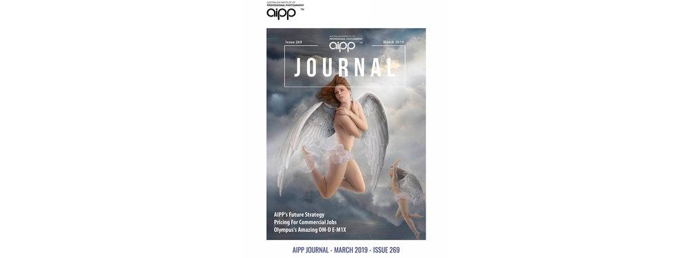 AIPP Journal Cover_Danny_Kneebone banner.jpg