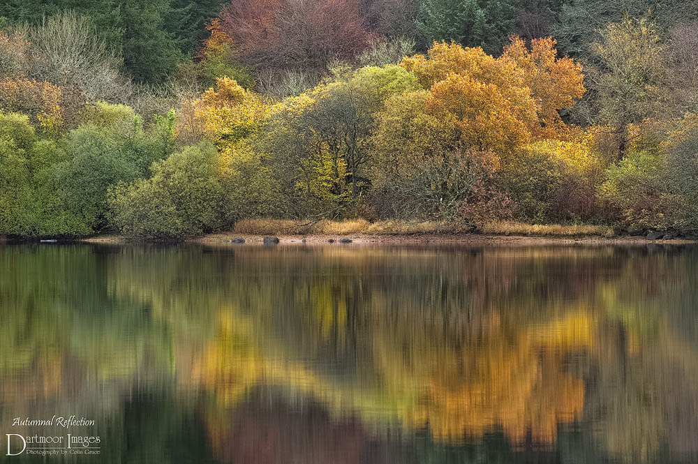 Autumnal Reflection