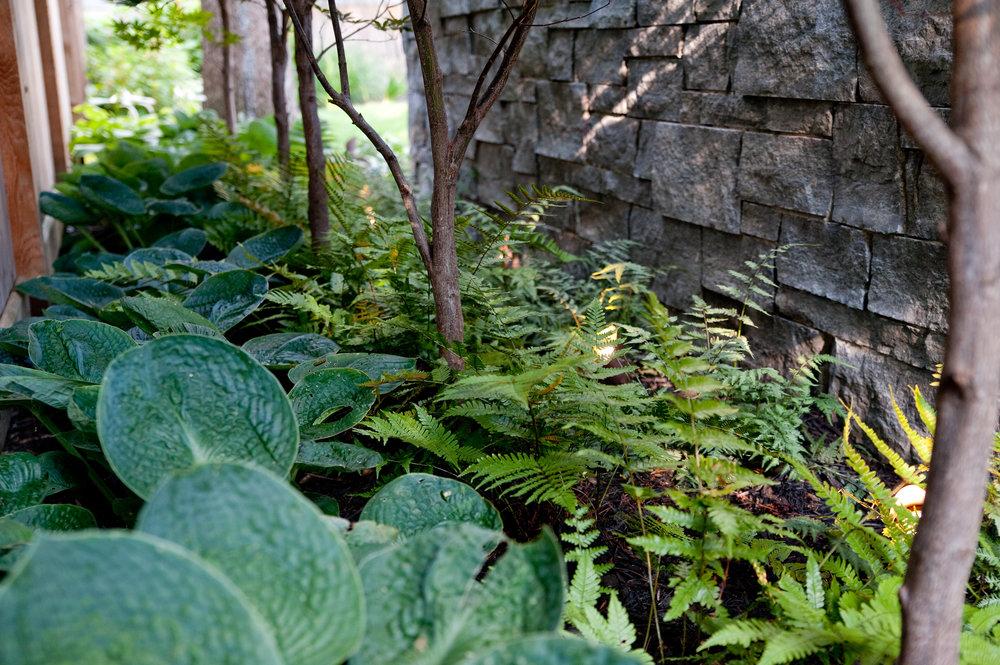 Upper Arlington Landscape Design-4.jpg