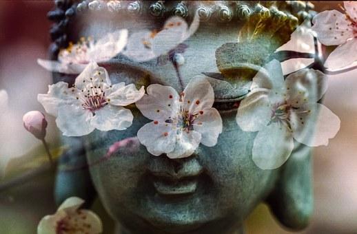 buddha-1279902__340.jpg