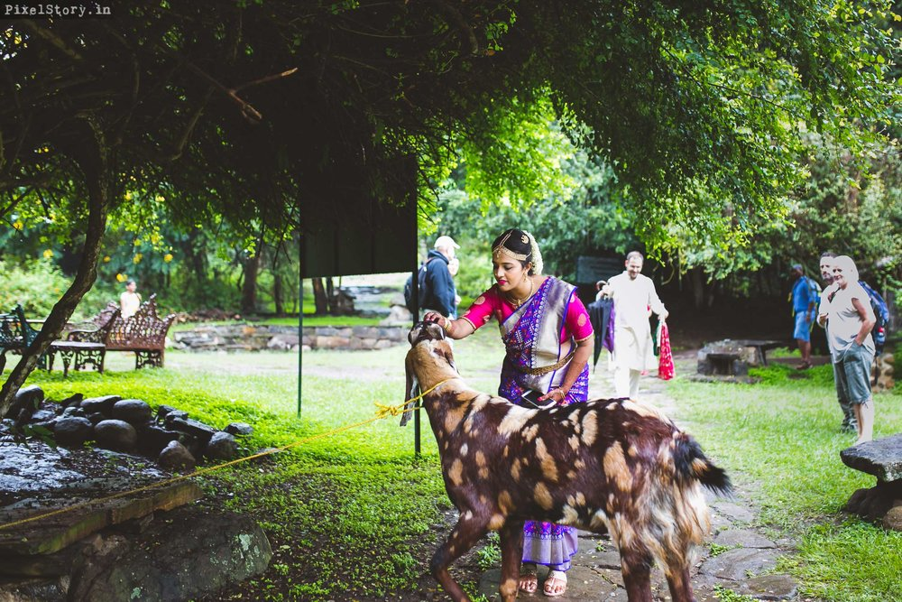 PixelStory-Jungle-Wedding-Photographer-Masinagudi-Indo-French018.jpg