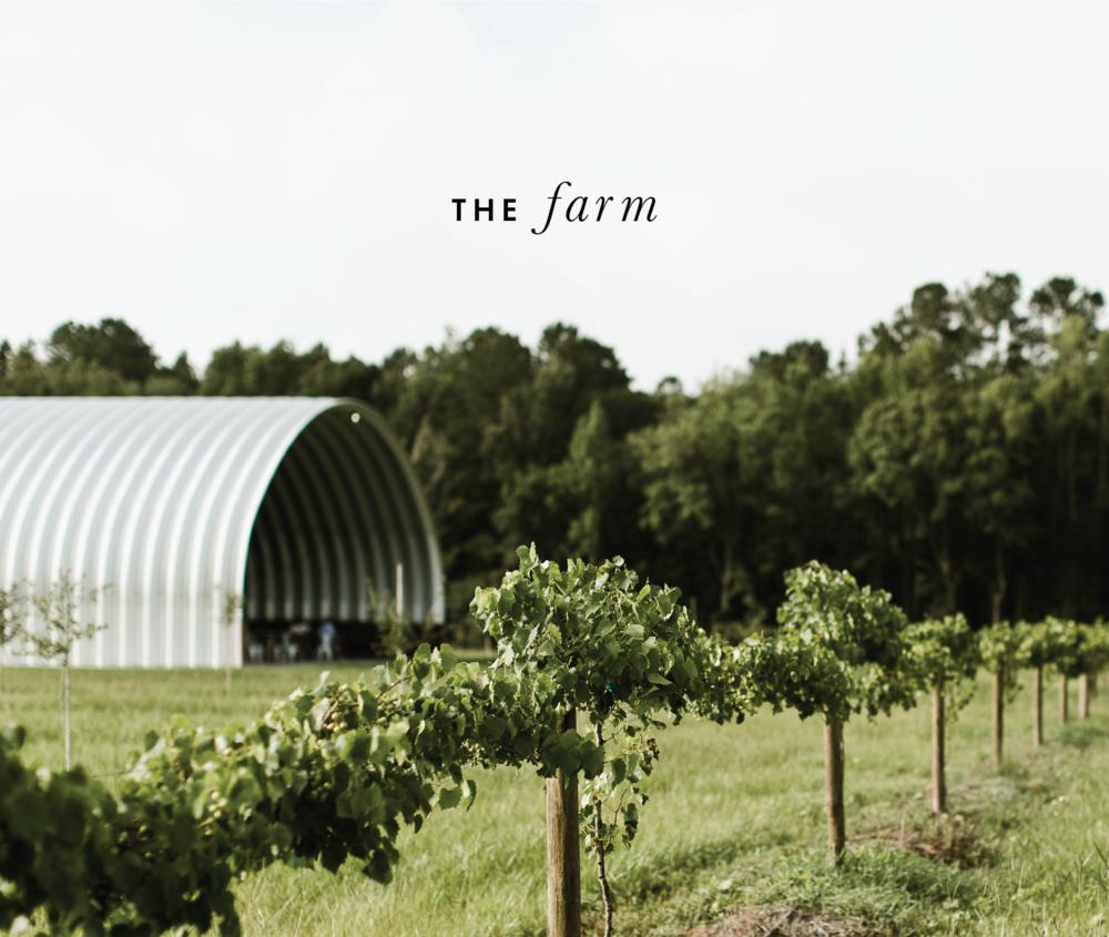 thefarm-01.png
