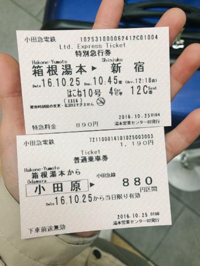 Tokyo Hakone Trip-69.jpg
