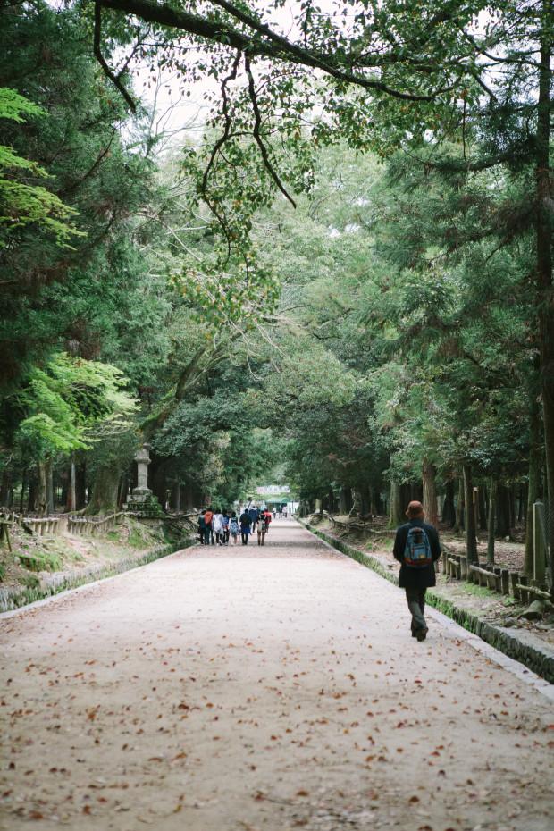 2015 Kyoto Nara-149