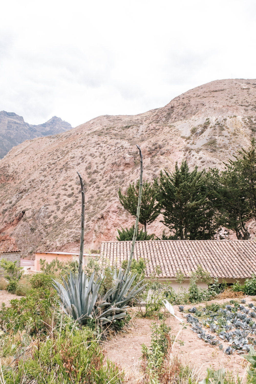 2017 Peru Trip-173.jpg