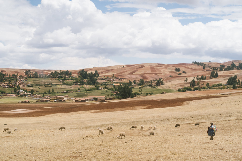 2017 Peru Trip-205.jpg